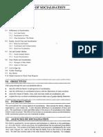 ESO11_9 Agencies of Socialisation