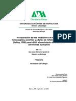 - Incorporacion de antibioticos en Artemia Franciscana.pdf