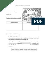 cadenaalimenticias-repaso-120702161711-phpapp01.docx