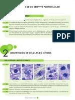 Solucionario Prácticas de laboratorio Biología y Geología 4º ESO.pdf