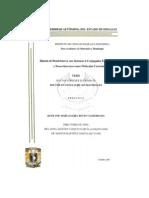 Sintesis de dendrimeros.pdf