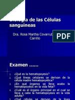 2_1_Hematopoyesis.ppt