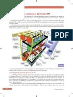 Muestra_Cap. 06.pdf