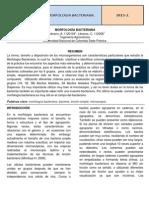 MORFOLOGÍA BACTERIANA 3.docx