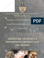 SAOSexpo.pdf