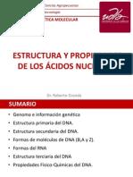 Conf-2 Estructura de  los a.n. Ok(3).ppt
