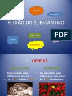 cdocumentsandsettingsadministradordesktoplucivaneflexodosubstantivo-091118083522-phpapp01.pptx