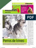 05-10-14-MASCOTAS-01.pdf
