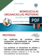 PROTEÍNAS (1).pptx
