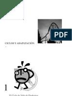 3_F_ciclos_y_adaptacion.ppt