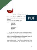 Resume Laporan Kunjungan Napza