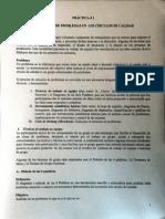 Práctica 1 - calidad .pdf