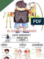 EL CUERPO HUMANO PRESENTACION.ppt