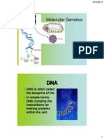 Lect 2- DNA and Molecular Genetic