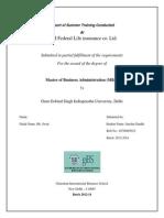 Portfolio Management in Idbi Federal Training Report