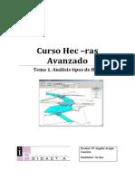 Tema 1. Análisis tipos de flujos.pdf
