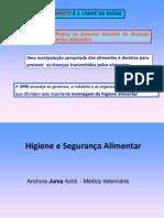 HSA 2 (apresentação).ppt
