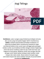 Histologi Telinga