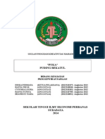 PROBIS KWU - PUKA-.doc