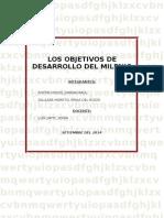 OBJETIVOS DEL MILENIO - TRABAJO.doc