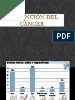 PREVENCIÓN DEL CANCER.pptx
