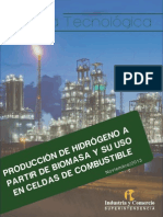 Alerta biocombustibles hidrógeno final.pdf