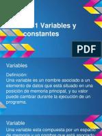 2.3.1 Variables y constante