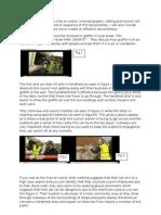 Hyde Park Graffiti- Documentary Analysis One