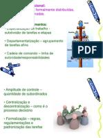 estrutura organizacional.ppt