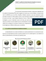 industrialización.pdf