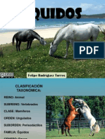 quidosoequinos-120103160520-phpapp01.pdf