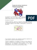 División de los Grupos de enzimas.docx
