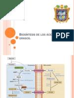 Biosíntesis de los ácidos grasos.pptx