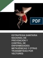 16452114-Estrategia-Sanitaria-Nacional-de-Prevencion-Enf-Metaxenicasy.ppt