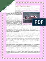 DELFINES ROSADOS.pdf