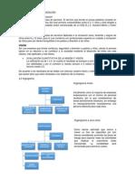 ESTUDIO DE LA ORGANIZACIÓN - MIS.docx