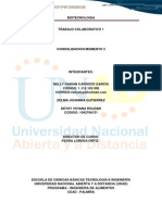 CONSOLIDACION_MOMENTO_3_grupo_305689_26.docx