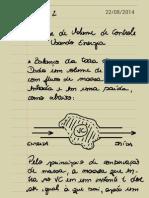 Termodinâmica II_22.08.14.pdf