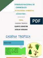 CADENA TROFICA.pptx