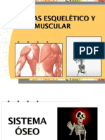 Presentac_Sist_Musculo-Esqueletico.pdf
