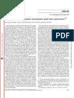 Low Vitamin D Concentration Exacerbates Adult Brain Dysfunction