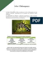 Fiebre Chikungunya.docx