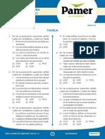 Eco_Tarea_Sem_R1.pdf