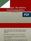 fisio musculo.pptx