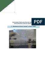 Simulaçao de chuva normal e acida.pdf