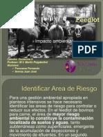 Impacto_ambiental_del_Feedlot.pdf