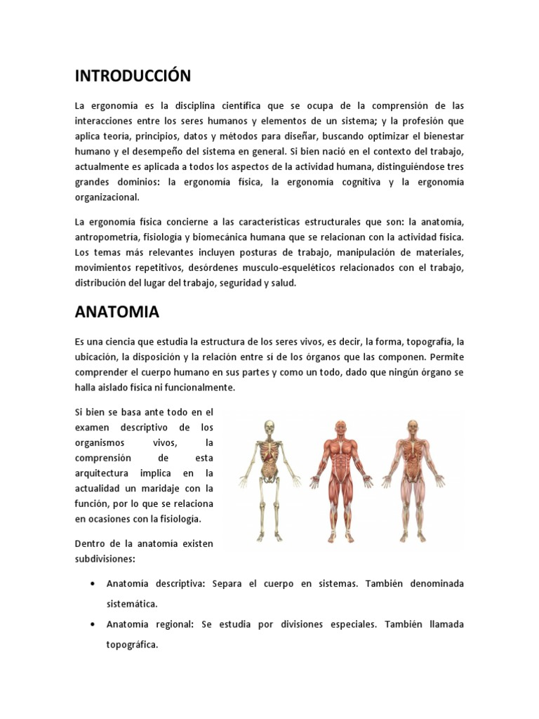 Aspectos de la Ergonomía Física.docx