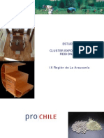 cluster-araucania.pdf