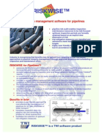 riskwise_pipep.pdf