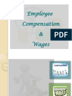 Compensation & Wages